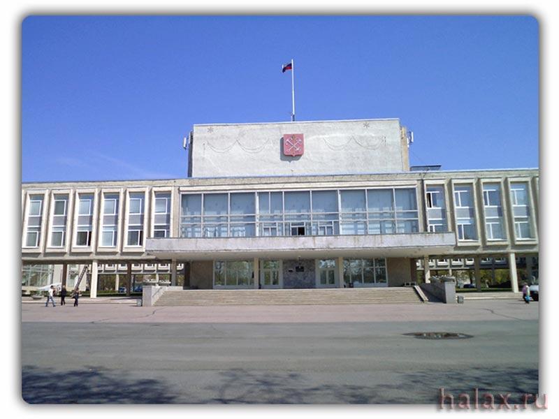 Курортный район администрация 046 справка на оружие Саларьево